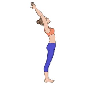 Surya Namaskara Step 2 : Hasta Utanasana