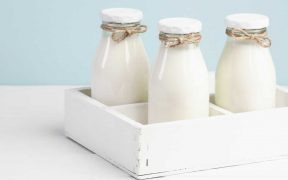 Why Milk, Medication And Calcium Supplements Is Ineffective Against Osteoporosis?